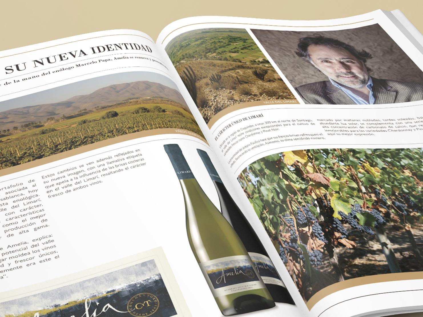 Revista Fine Wine Collection