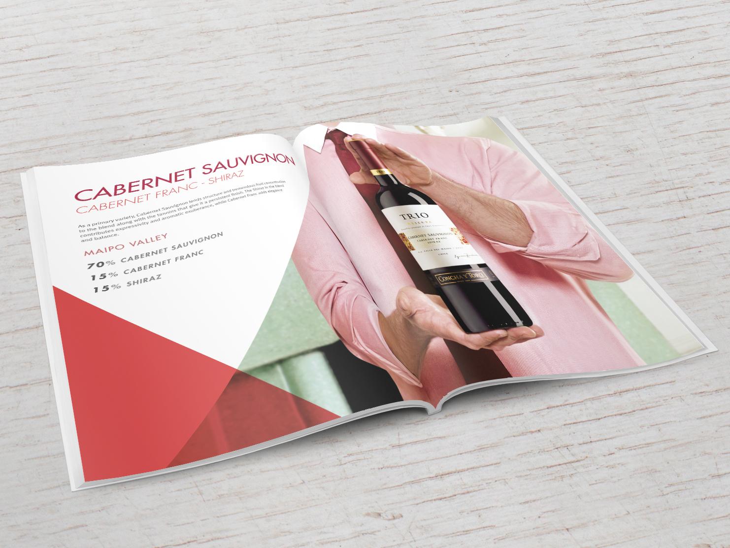 Brand-book-Trio-1468x1112_2