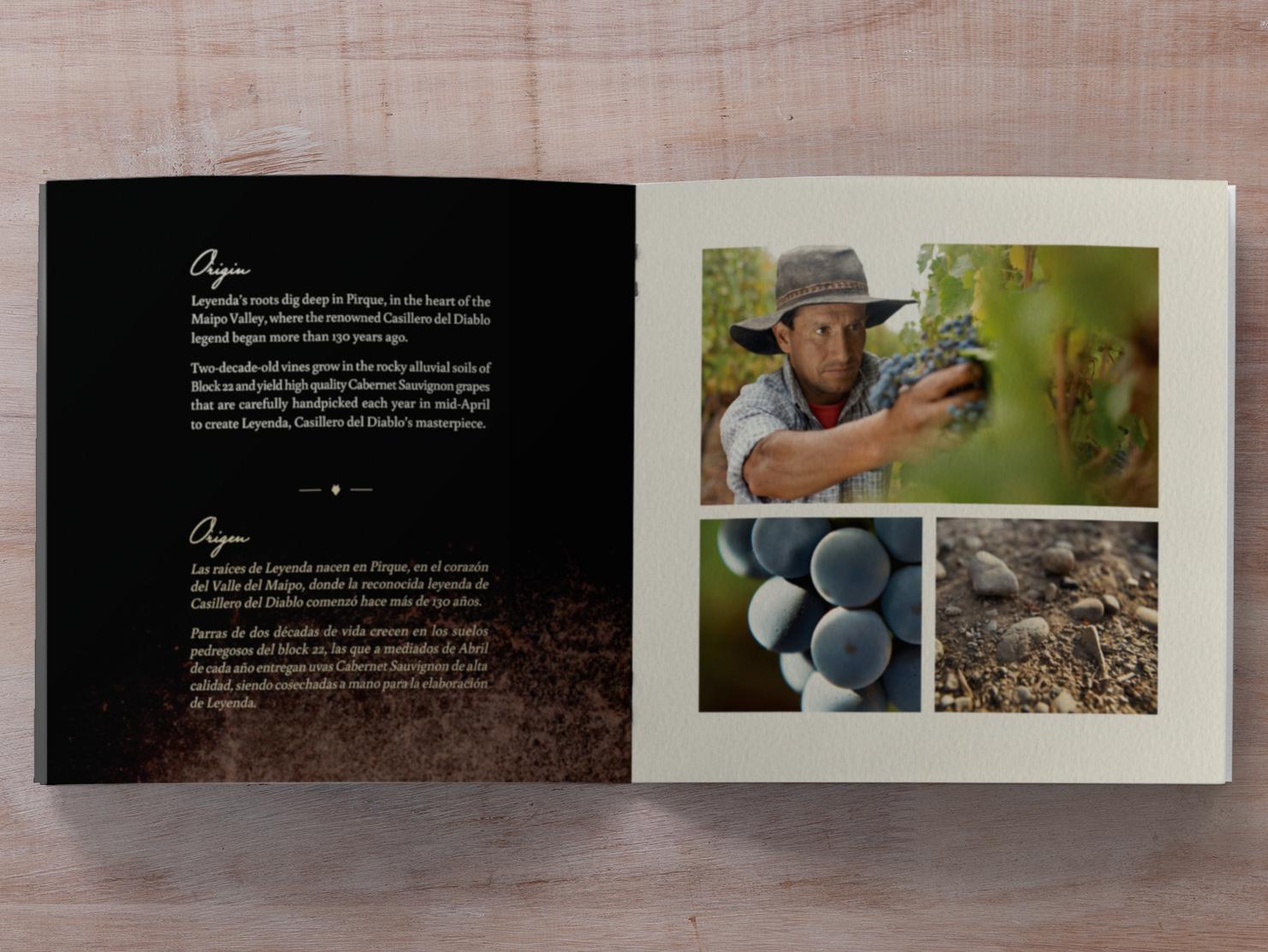 Brochure-Leyenda-1468x1112_1