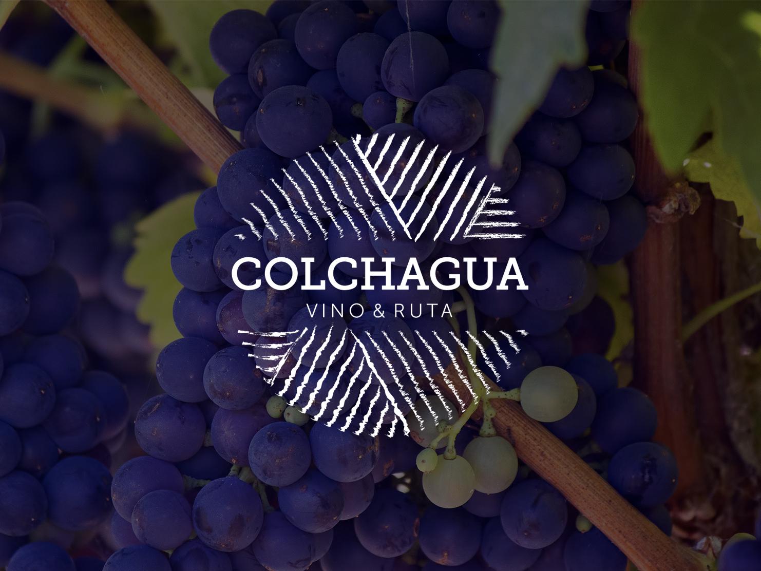 colchagua1-4