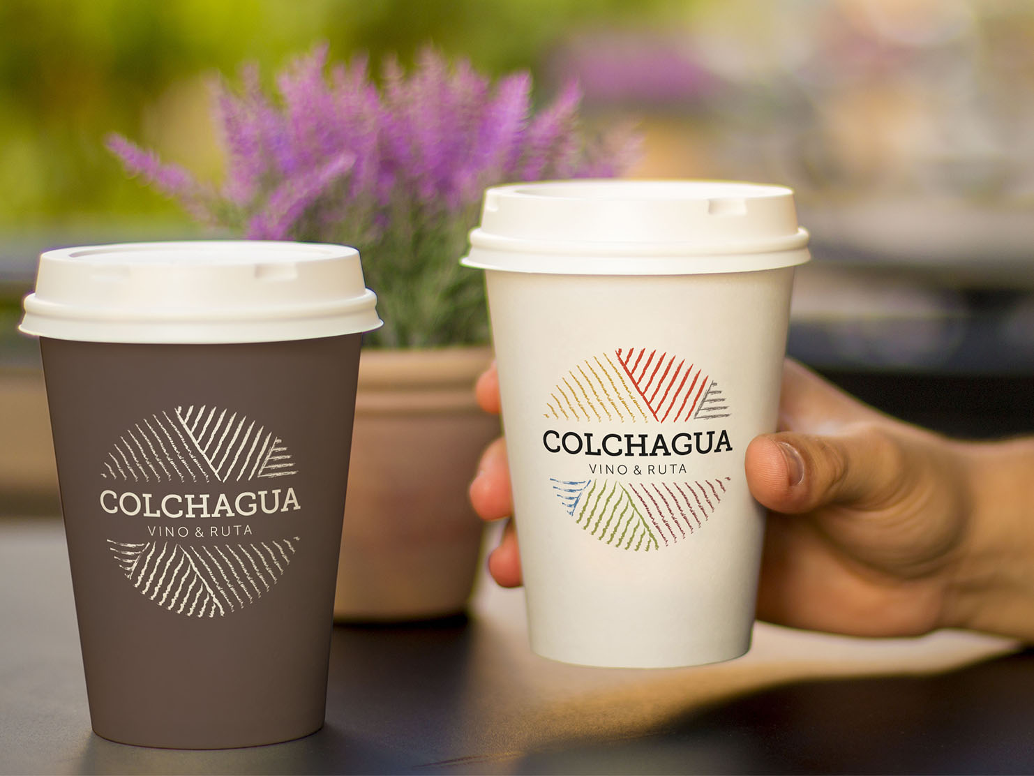 colchagua3-1