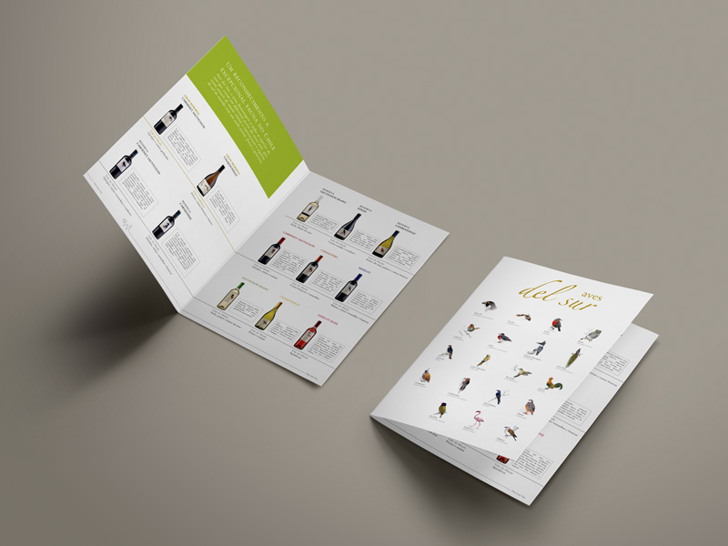 folleto_aves-del-sur